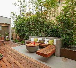 Báo giá thiết kế sân vườn chi tiết- Hướng dẫn chọn các loại cây xanh vừa rẻ vừa đẹp