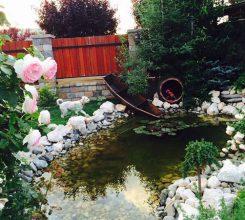 Thiết kế sân vườn mini – Hướng dẫn thiết kế sân vườn mini đẹp