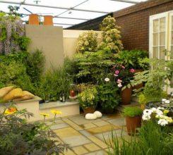 Kinh nghiệm thiết kế sân vườn trước nhà vừa đẹp vừa khoa học