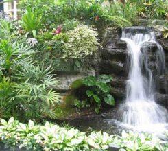 Hòn non bộ mini có thác nước – Sự hài hòa trong phong thủy cho ngôi nhà