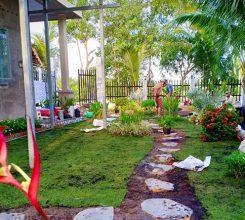 Thi công sân vườn bên hông nhà anh Thắng – Thành phố Nam Định