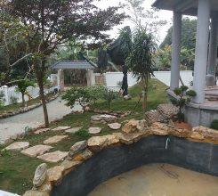 Thi công sân vườn biệt thự của nhà chú Bách – Sơn Tây, Hà Nội