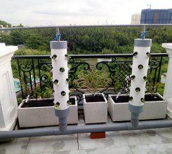 Thiết kế giàn rau thủy canh cho nhà chú Nguyễn Quang Anh – TP.Hồ Chí Minh