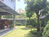 Thiết kế sân vườn biệt thự nhà chú Tú – Thanh Xuân, Hà Nội
