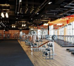 Top companies with the most prestigious gym rendering services